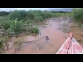 Опасная прогулка по реке, кишащей крокодилами