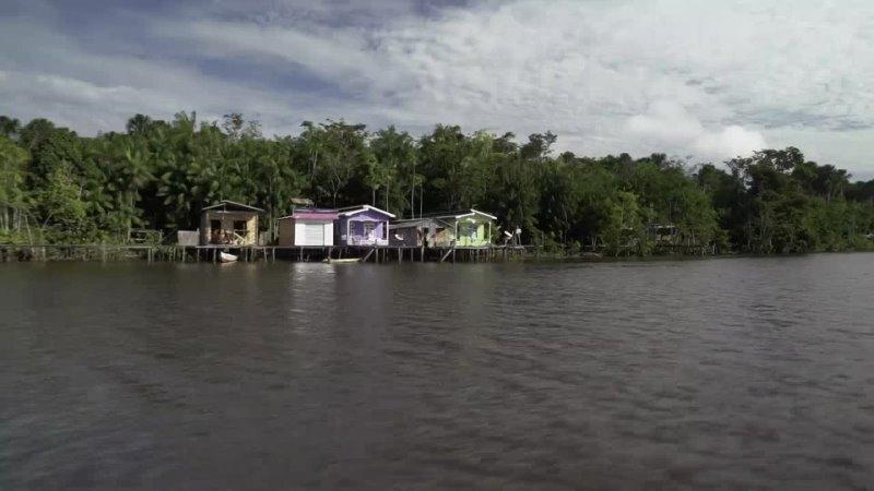 Deltas of the World S01E04 «Amazon- Healing Tropics» (ARTE 2018 FR, DE) (ENG SUB ENG)