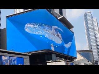 ТЦ в Чэнду (Китай) 3D шоу