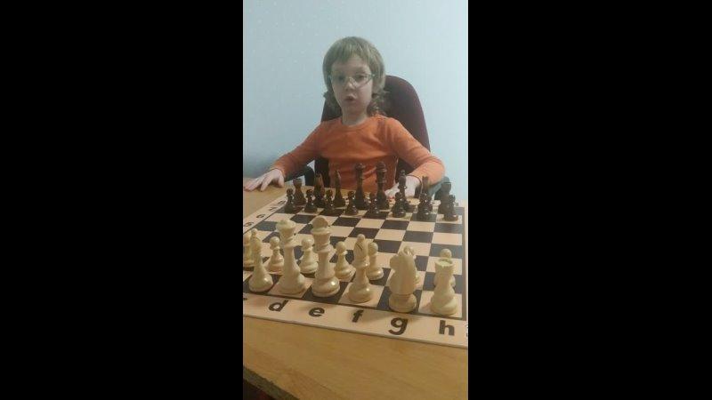 Шахматы игра Королей