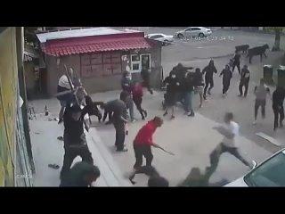 В Дманисском районе Грузии случилась массовая драка в месте компактного проживания азербайджанцев.