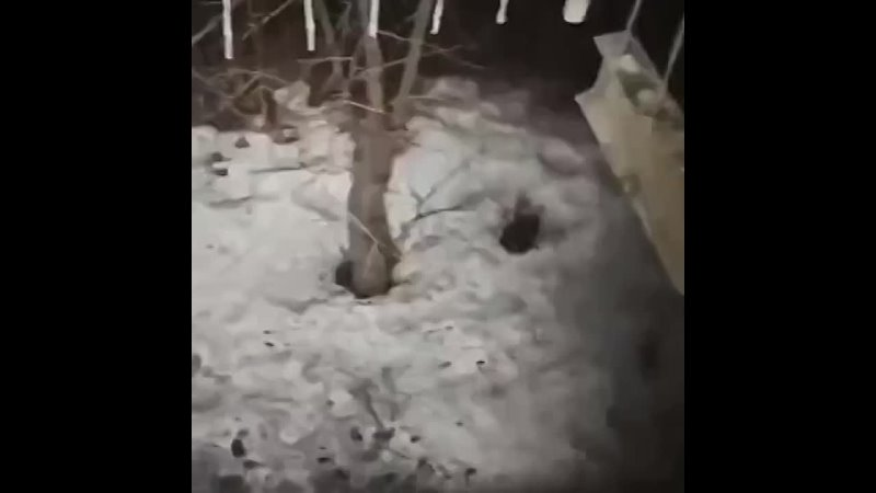 Балкон расстаял.mp4