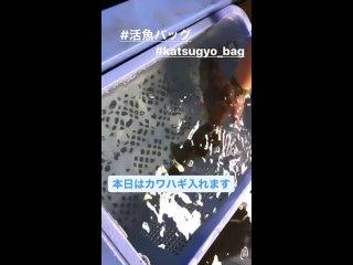 Японская сумка для рыбок