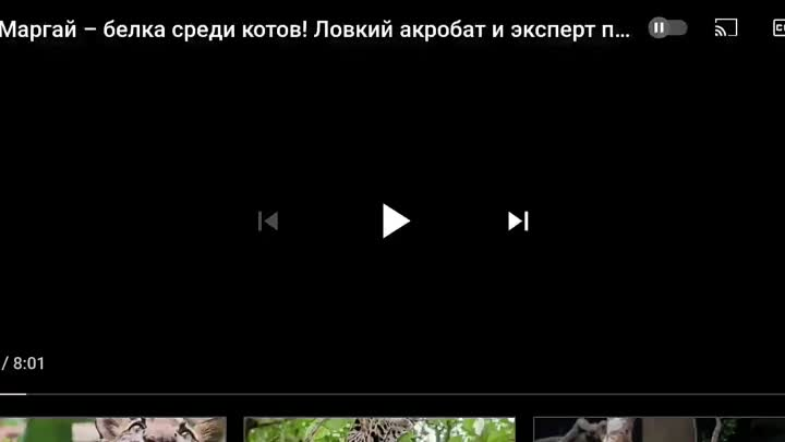 Screen_Recording_20210529-221452_YouTube.mp4