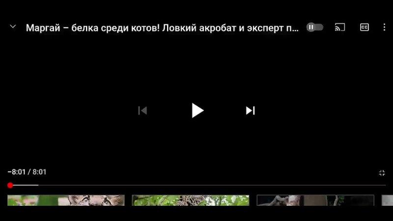 Screen Recording 20210529