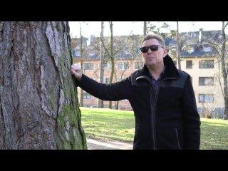 Андрей Шпехт  - Доброе утро (официальный клип)