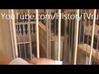 Последнее слово Чикатило [документальный фильм] [1_2] Chikatilo in Court (720p).mp4
