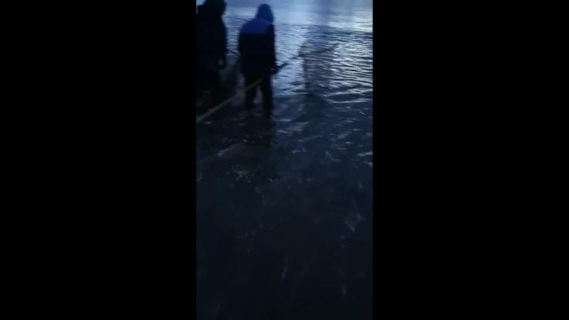 Баренцево море. Териберка 2021.