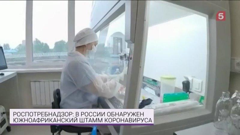 До России добрался южноафриканский штамм коронавируса