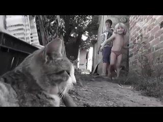Детский ад. Специальный репортаж - Россия 24