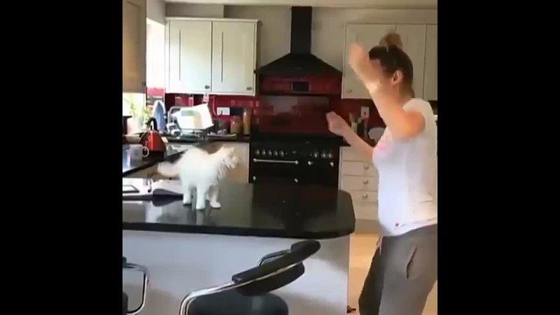 Когда с котом на одной волне 😻