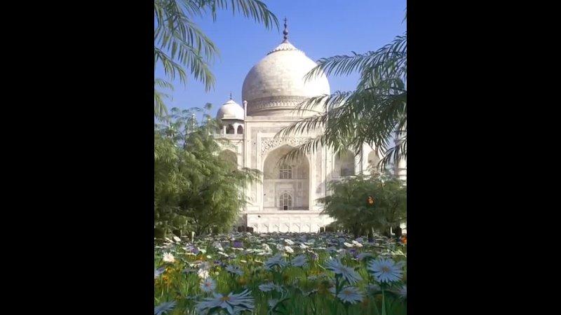 Тадж Махал восьмое чудо света одна из самых красивых зданий в мире Построенный по приказу Шах Джахана как символ утраченно