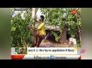 Студент в Индии провел 11 дней на дереве, чтобы не заразить близких ковидом