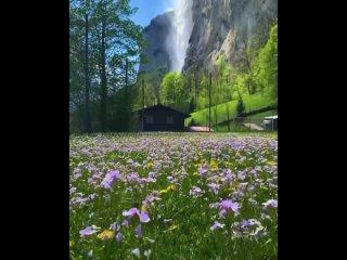Швейцария.mp4