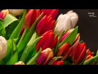 Какая красивая музыка о нежности и любви! Цветы красиво распускаются под музыку