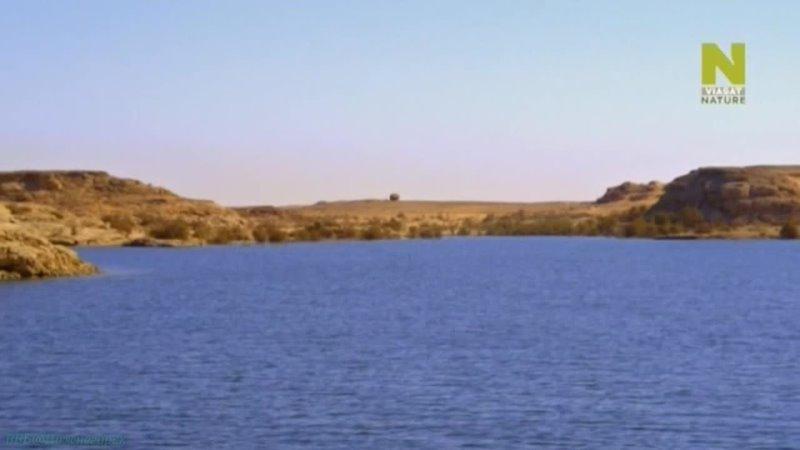 Тайны мировых озёр 1 Озеро Насер Вода посреди пустыни Познавательный природа путешествие 2015
