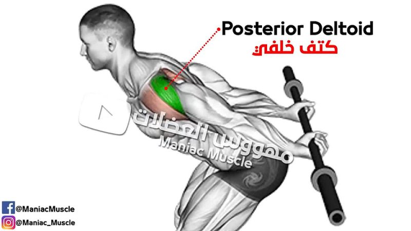 BEST 8 Rear Delt Exercises for Strong and Durable Shoulders.mp4