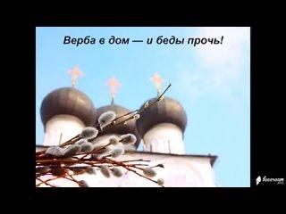 видеооткрытка_верба_в_дом_и_беды_прочь.mp4