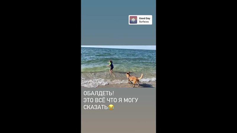 Муза и Айрис купаются в океане