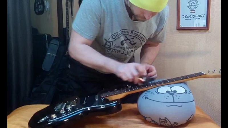 гитара Kingston второе рождение