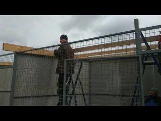 Строительство приюта для животных в Пскове
