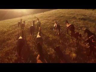 Жизнь Диких Животных - 🐻 Удивительная Природа 🦁 - Интересное Залипательное Видео |