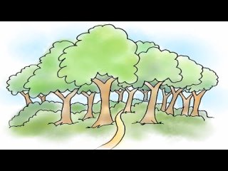 Learn_Nature_Vocabulary_-_English_Vocabulary_For_Children_-_