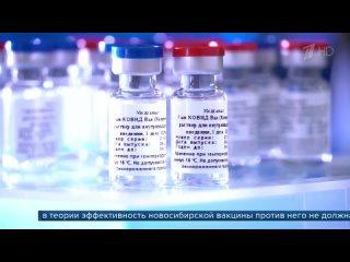 В Бразилии подтвердили эффективность вакцины «Спутник V», однако власти страны запретили ее закупать