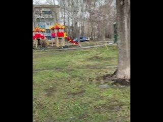 Во дворе Локомотивная 201 не вывозят мусор 😡