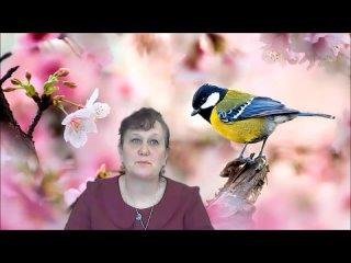 В гости к пернатым друзьям - к Международному дню птиц