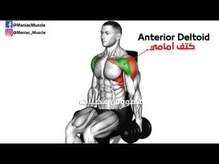 [مهووس عضلات /كمال الأجسام] فجر عضلة الكتف بهذه 6 تمارين الرائعة 🔥 Shoulder Workout