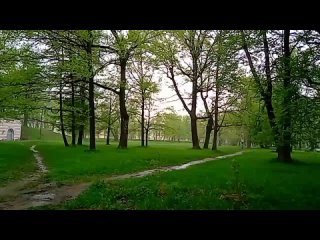 VID_20210519_ Орловский парк, посёлок Стрельна_ ДОЖДЬ.mp4