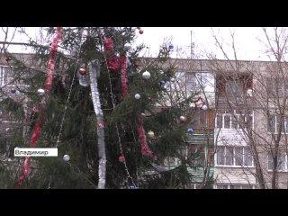 Жители_Владимира_жалуются_на_новогоднюю_елку_во_дворе_(2021_04_12).mp4