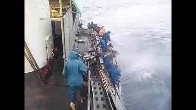 Мужики и классная рыбалка