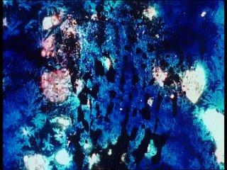 Fear of Blushing (2001) dir. Jennifer Reeves
