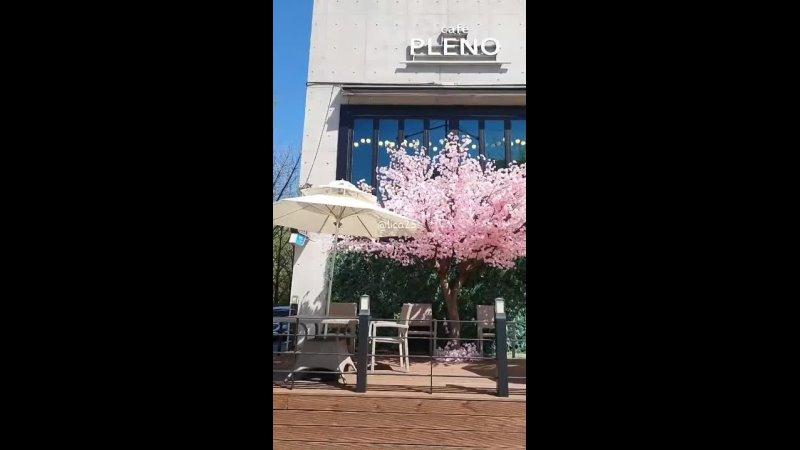 2021 04 11 cafe PLENO lica25s в Instagram