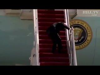 Это старик Бидон так пытался сегодня попасть в свой самолёт. Без слез смотреть невозможно. Какие уж тут разговоры с Путиным