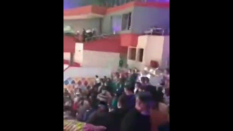 Один слон напал на другого во время представления в казанском цирке никто не пострадал представитель цирка