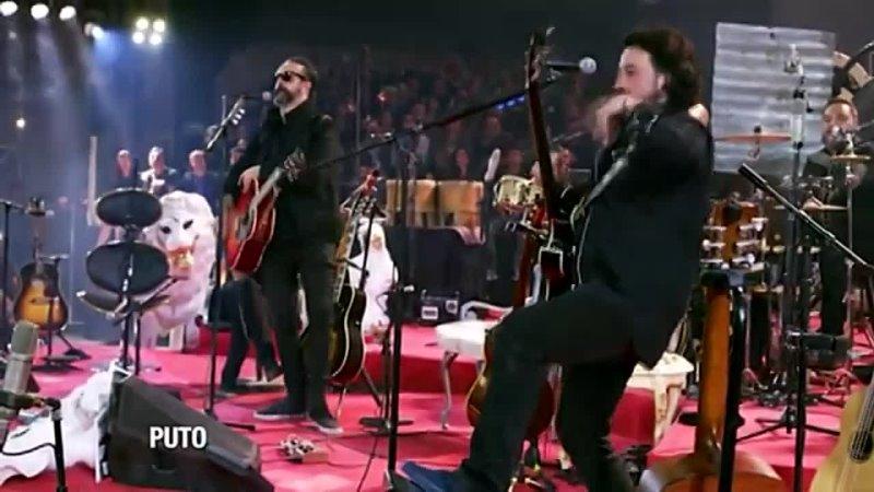 Molotov - Puto (Unplugged)(360P).mp4