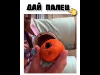 прикол,смешные видео,юмор,xoxmaland. дай палец .mp4