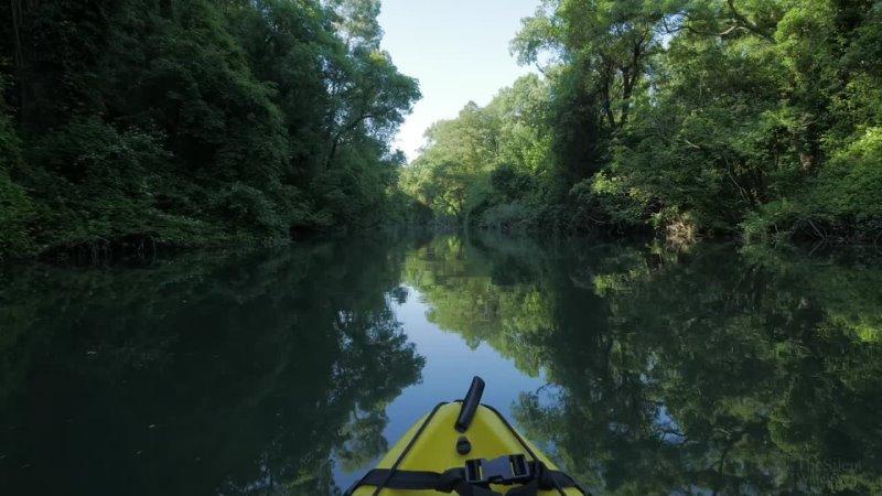 4K River Kayaking - Birds Singing - Water Sounds - Paddling a Canoe Relaxing Nature Video - NO LOOP