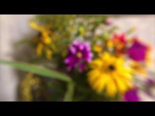 Музыка про ЛЮБОВЬ БЕЗ СЛОВ. Цветы из Осеннего Сада [Antistress Music]