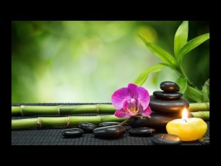 [Top Relaxing Music] 🎶🎶Beautiful Relaxing Music for Stress Relief • Meditation Music, Sleep Music, Ambient Study Music🎶🎶🎶