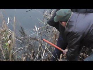 Ловля щуки на живца с берега