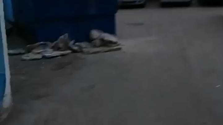 """Сегодня 11 мая в 21:20 """"умные"""" люди решили сэкономить на вывозе строительного мусора и выгрузили его..."""
