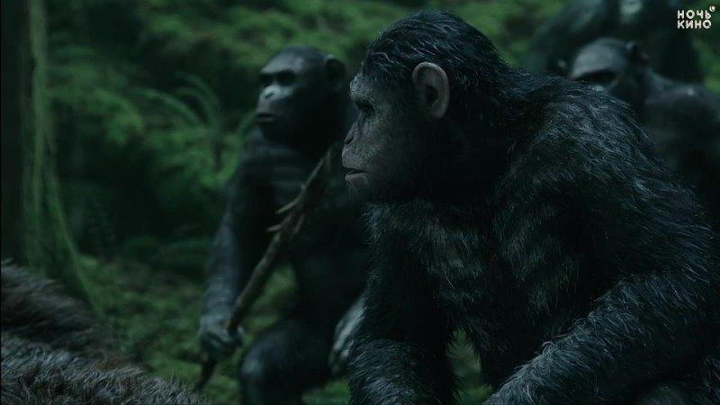 Планета обезьян Революция 2014