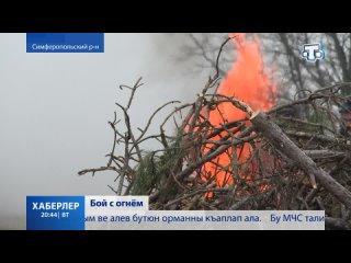 В Симферополе «ликвидировали» лесной пожар