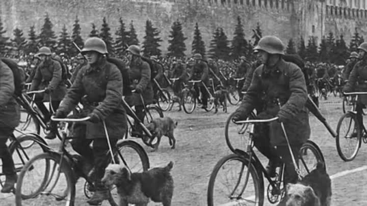Cобаки на войне. Dogs at War (720p).mp4