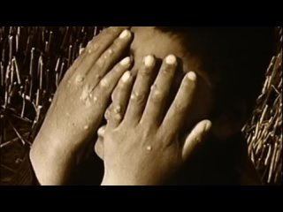 Tanita Tikaram # Twist In My Sobriety # Official Video #
