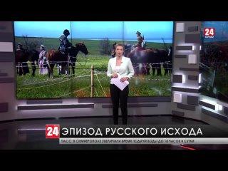В селе Челядиново Ленинского района прошла военно-историческая реконструкция в честь 100-летия окончания гражданской войны на юг